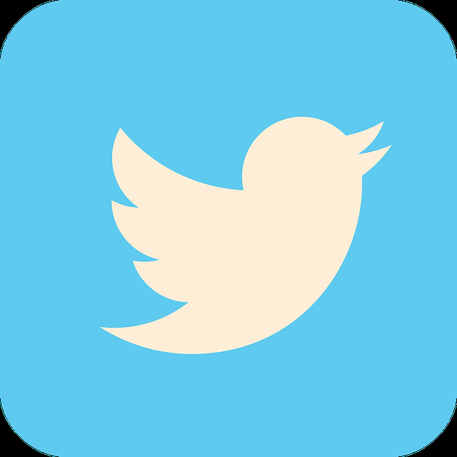 Twitter Pages: Discover, save, and share